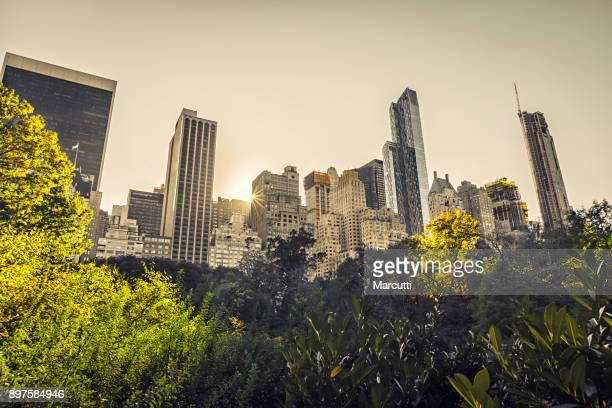 Manhattan buildings, Central Park, New York City