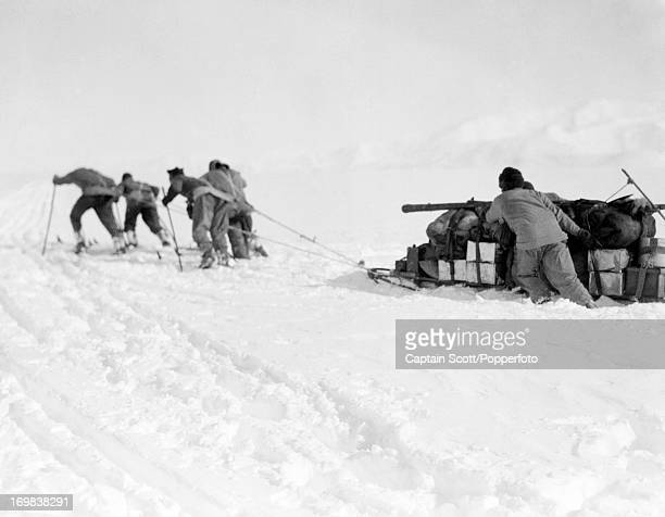 Manhaulers foundering in soft snow on the Beardmore Glacier photographed during the last tragic voyage to Antarctica by Captain Robert Falcon Scott...