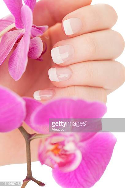 Manicure: beautiful female hands touching orchid flowers