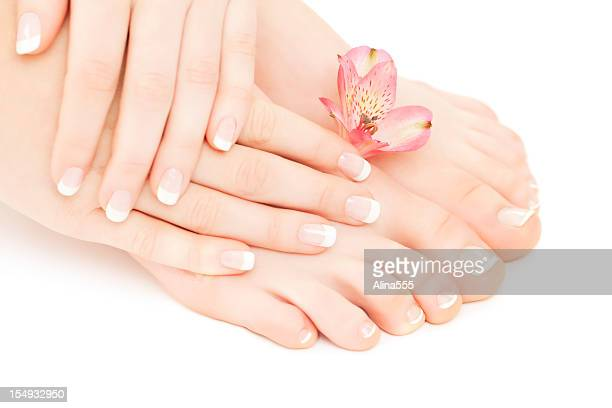 Manicure- pedicure: beautiful female hands and feet