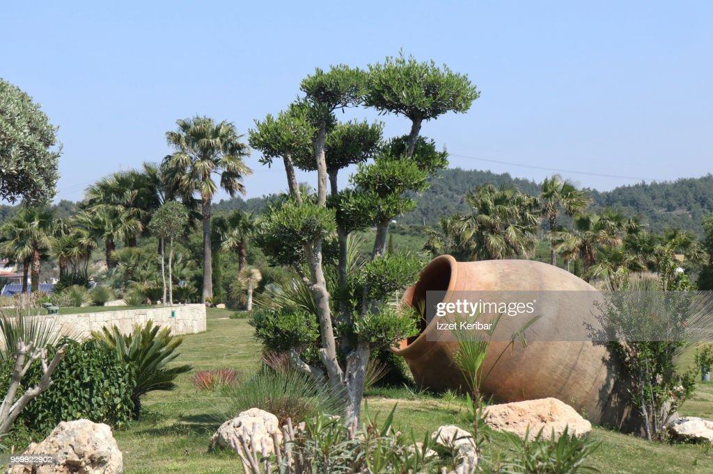 Manicured garden of a wine factory at Urla, Izmir ,Turkey : Stock-Foto