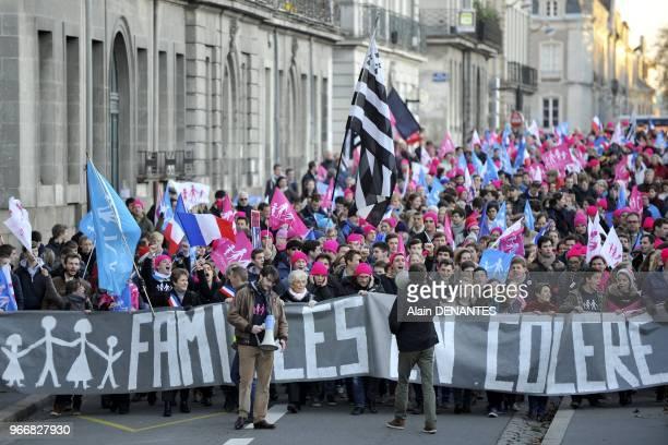 Manifestation regionale des opposants au mariage pour tous en presence de Ludovine de La Rochere presidente nationale de La Manif Pour Tous le 23...