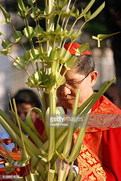 Manila Archbishop Luis Antonio Cardinal Tagle leads the blessing of palm fronds at Plaza Roma Intramuros in celebration of Palm Sunday Palm Sunday...