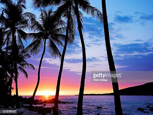 Manini Sunset