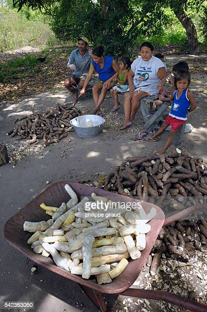 Manioc preparation in a caboque village along the riverbank of the Tapajos