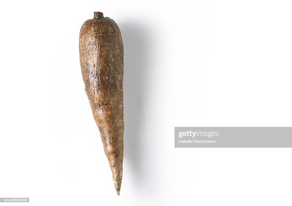 Manioc root, full length : Stockfoto
