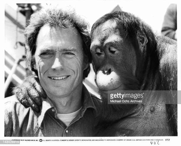 Manis the orangutan has his arm around Clint Eastwood in a scene from the film 'Any Which Way But Loose' 1978