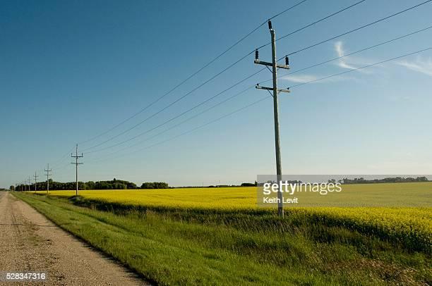 Manitoba, Canada; Power lines