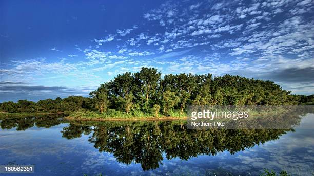 manitoba morning , oxbow on the assinaboine river - northern pike stock photos and pictures