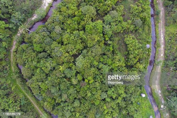 Man-made island is seen at the Samboja Lodge eco-tourism resort, operated by the Borneo Orangutan Survival Foundation , in East Kalimantan, Borneo,...
