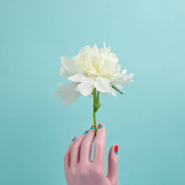 Mannequin hand holding white peony