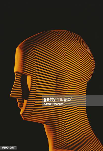 A mannequin head with parallel lines superimposed over it 1983