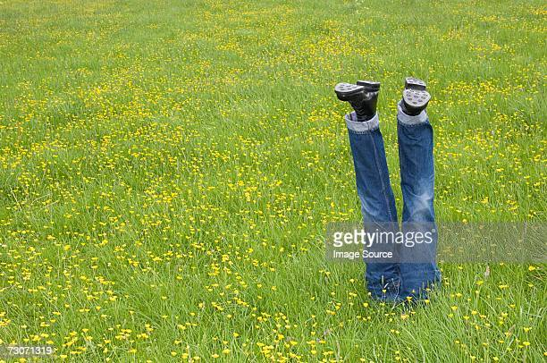mannequin legs in a field - low section stock pictures, royalty-free photos & images
