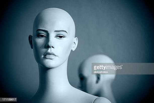 mannequins heads - female likeness stock pictures, royalty-free photos & images