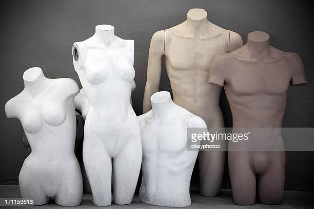 Mannequins Torso