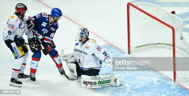 Mannheim's Andrew Desjardins scores the 61 passing Berlin's goalkeeper Petri Vehanen and Daniel Richmond at the SAPArena in Mannheim Germany 14...