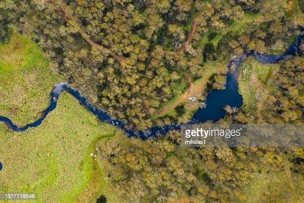 manning river, barrington tops national park - wilderness stock pictures, royalty-free photos & images