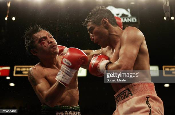 Manny Pacquiao of the Philippines is hit by a right hook as he throws a jab at Erik Morales of Mexico during Morales' 1513 unanimous decision winning...