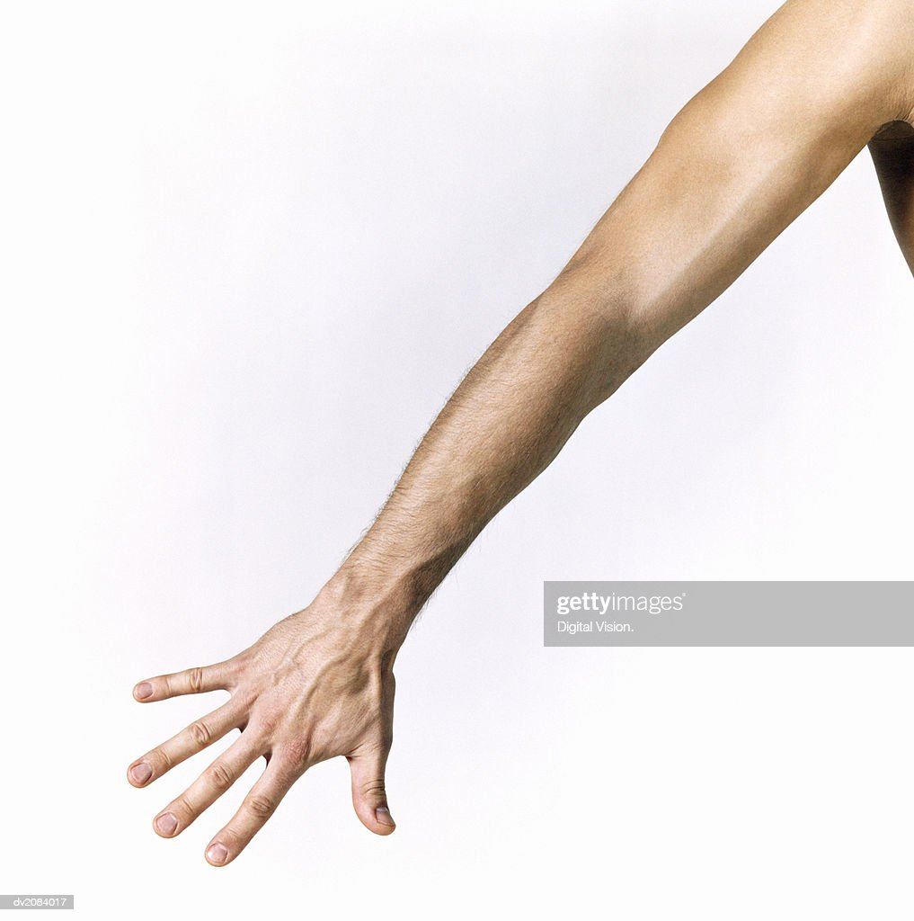 Man's Arm : Stock Photo