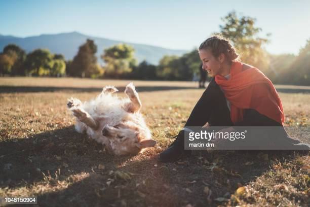 man's best friend - dog walker stock photos and pictures