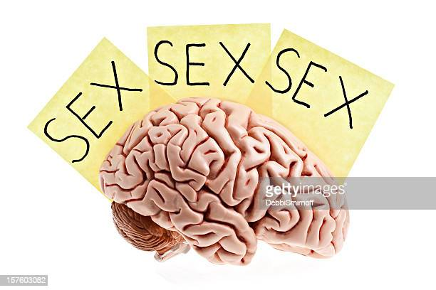 man's brain. - addict stock photos and pictures