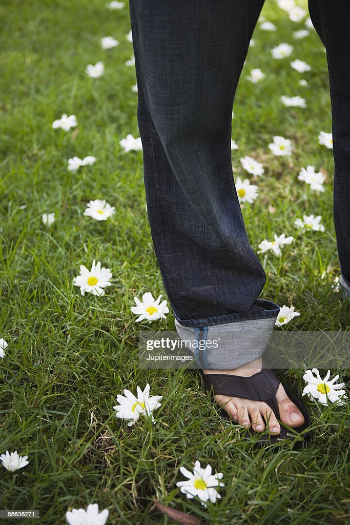 Man's foot on grass with daisies : Stock Photo