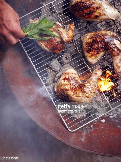 mans hand grilling guam chicken legs on barbecue - huhn geflügelfleisch stock-fotos und bilder