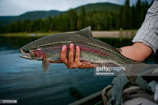 A mans hand holding a freshly caught rainbow trout