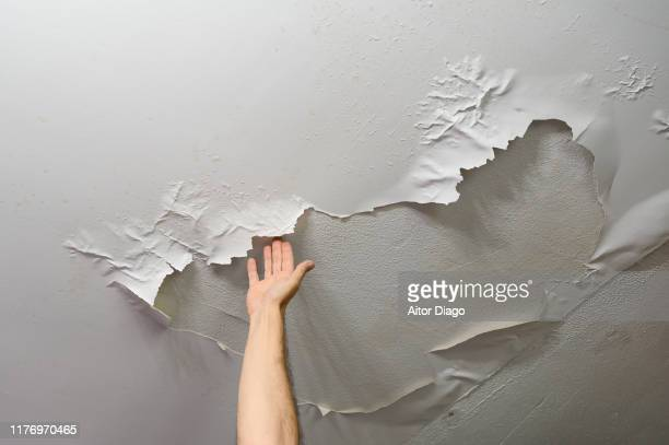 man´s hand removing baffles from ceiling paint, it has been peeled off by moisture. plumbing work at home - run down stock pictures, royalty-free photos & images