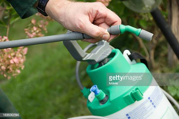 man's hand with a sprayer to fertilize