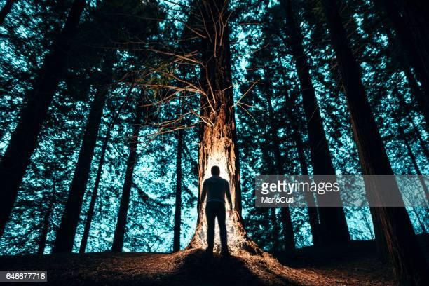 Mannens siluett i skogen