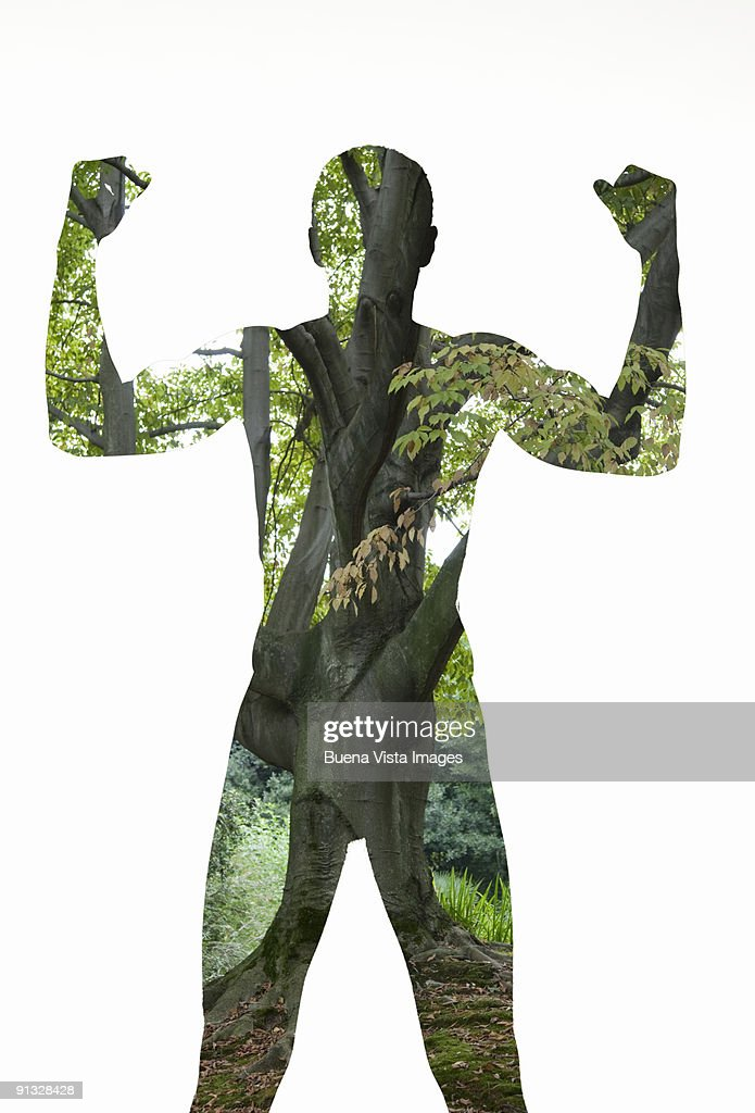 Man-tree : Stock Photo
