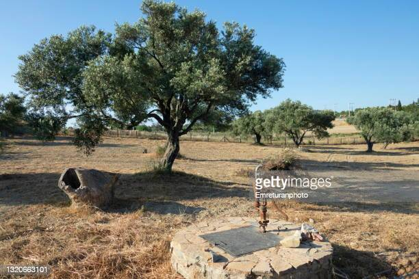 manual waterpump on a well in the garden,cesme. - emreturanphoto stock pictures, royalty-free photos & images