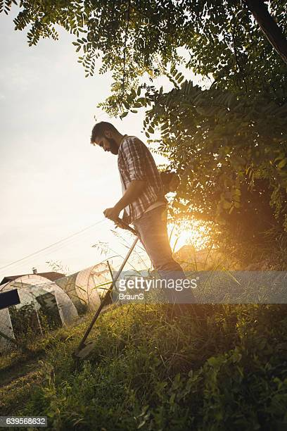 Manual worker cutting grass with weed trimmer at sunset.