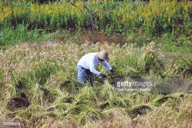 Manual Worker Working At Farm