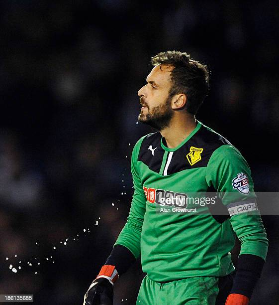 Manuel Almunia of Watford spits water from his mouth during the Sky Bet Championship match between Brighton & Hove Albion and Watford at The Amex...