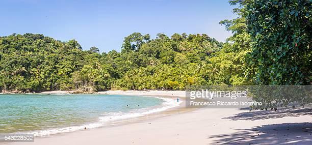 manuel antonio beach, costa rica - iacomino costa rica foto e immagini stock