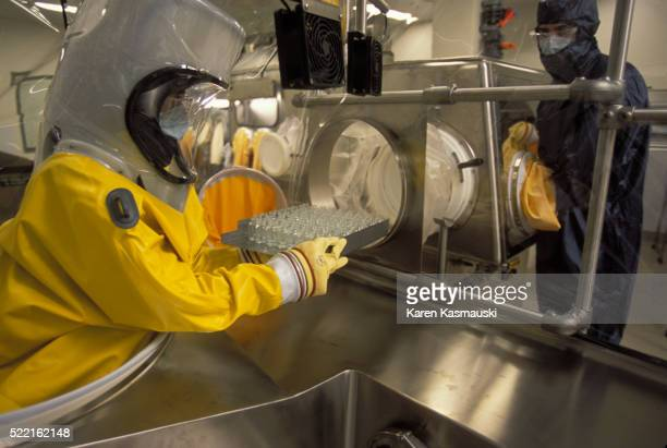 manufacturing smallpox - smallpox virus stock pictures, royalty-free photos & images