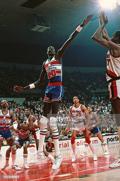 Manute Bol of the Washington Bullets defends against the Portland Trail Blazers during a game played circa 1986 at the Veterans Memorial Coliseum in...