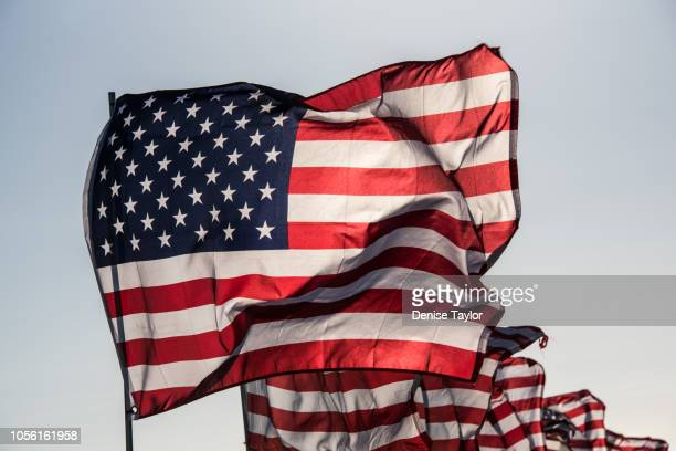 many american flags - american flag background stock pictures, royalty-free photos & images