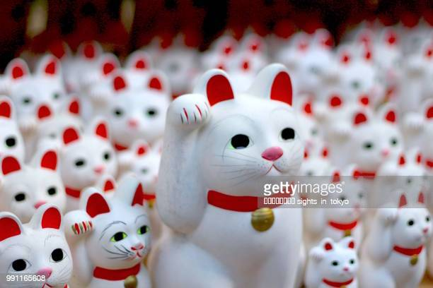 many backoning cat in the temple - maneki neko stock photos and pictures