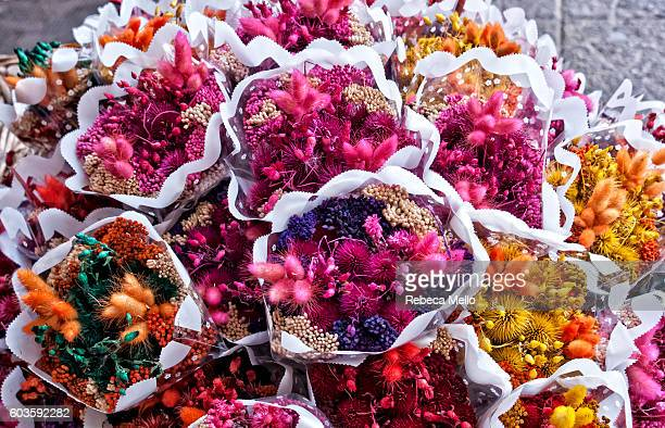 Many bunches of dried flowers