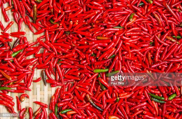 Many chili peppers, Cambodia , Southeast Asia, Asia