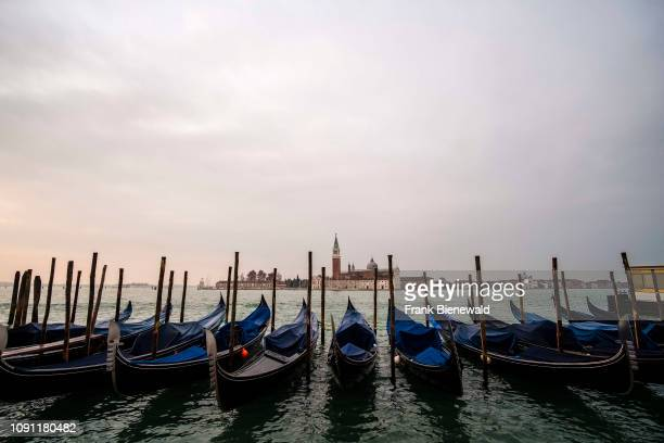 Many Gondolas the traditional venetian rowing boats are tied up at the Grand Canal Canal Grande Church of San Giorgio Maggiore in the distance at...