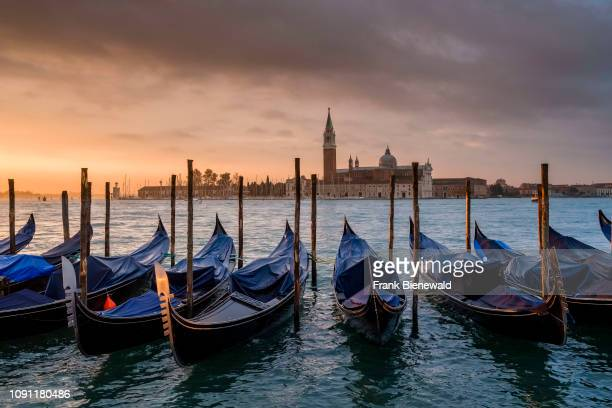 Many Gondolas, the traditional venetian rowing boats, are tied up at the Grand Canal, Canal Grande, Church of San Giorgio Maggiore in the distance at...