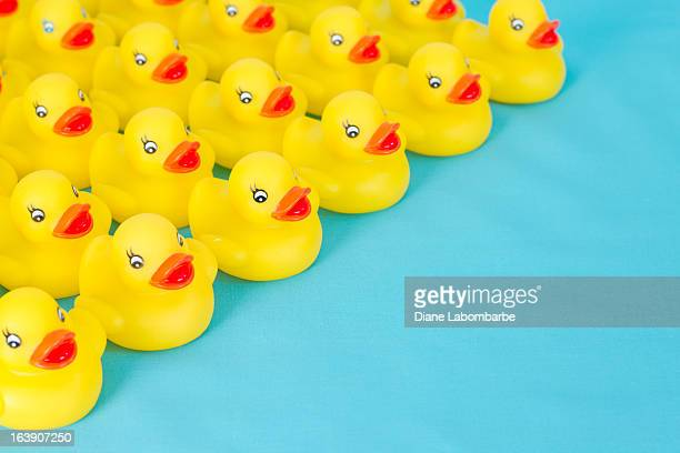 Many rows of yellow rubber ducks on light blue background.