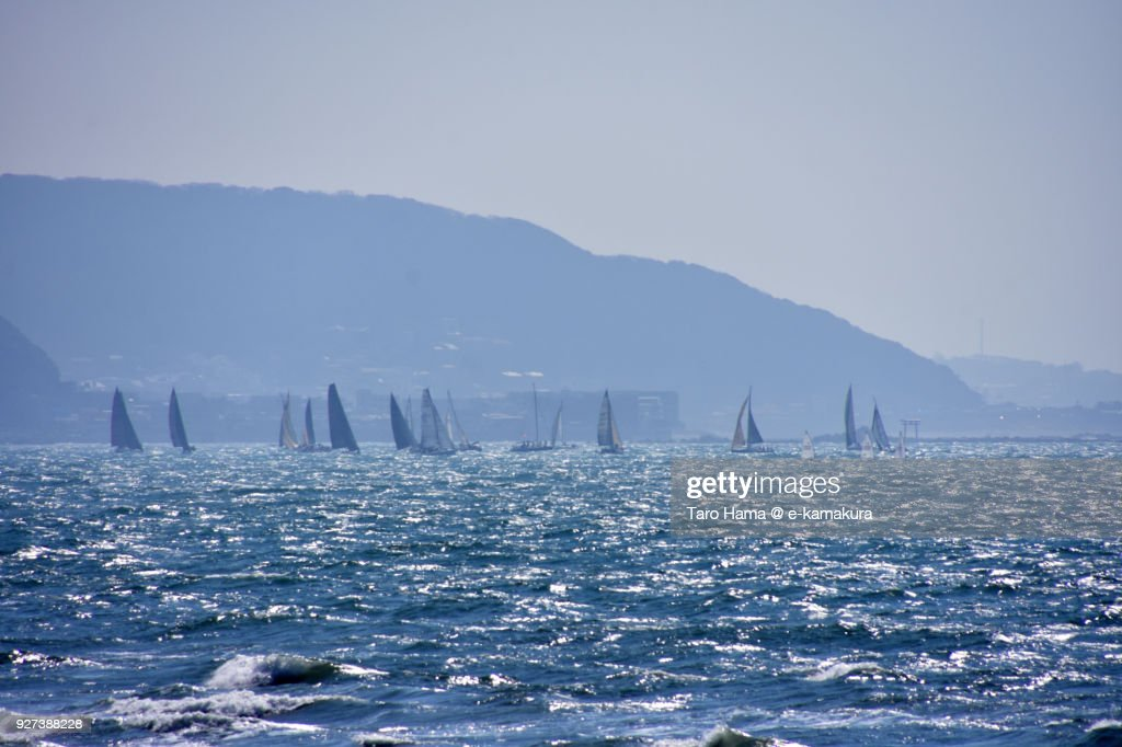 Many sailing yachts on Sagami Bay, Pacific Ocean in Hayama town in Kanagawa prefecture in Japan : ストックフォト