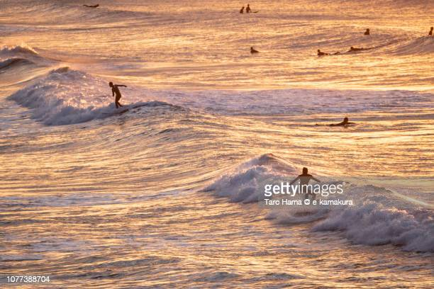 Many surfers enjoying the surf on the morning beach in Kamakura city in Japan