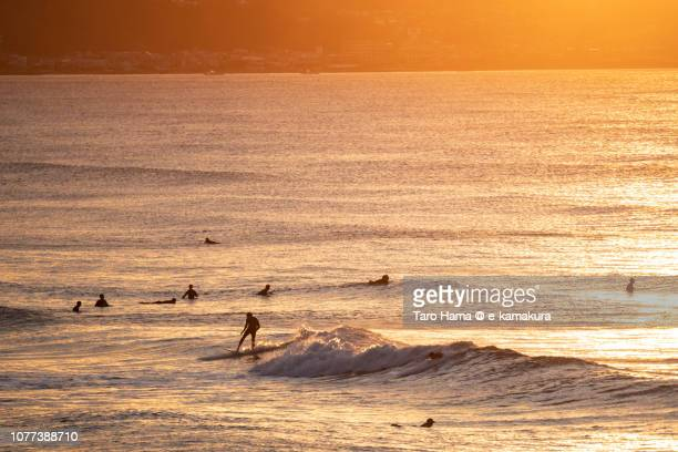 Many surfers enjoying the surf on the morning beach in Kamakura in Japan
