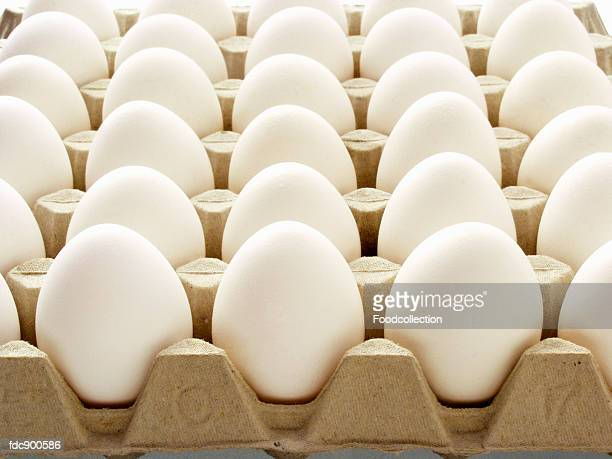Many White Eggs